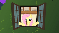 Fluttershy looks out her window S1E17