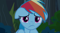 Rainbow Dash -what have I done-- S4E04
