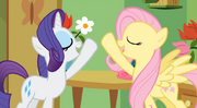 Rarity and fluttershy by sami896968-d50sv41