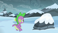 Spike walking up to a rock S6E16