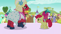 Apple Bloom asking if Orchard Blossom knows the lyrics S5E17.png