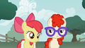 Apple Bloom clueless moment S1E12.png