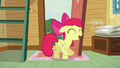 Apple Bloom shows off her cutie mark S5E4.png