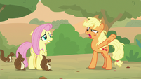 Applejack -we're on a friendship quest- S8E23