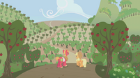 Applejack and Big Mac looking out at apple crop S1E04