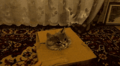Cat in a box.png