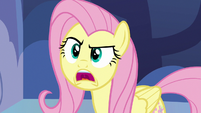 "Fluttershy ""I don't know what I'm gonna do"" S7E14"