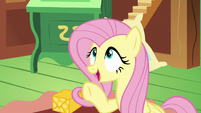 Fluttershy --if you're looking for something to do-- S6E17