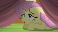 Fluttershy -Oh, look- S5E21