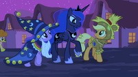 Luna walking with Twilight and Applejack S2E04