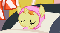 Pumpkin Cake asleep S2E13