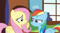 """Rainbow """"Tortoises don't hibernate!"""" S5E5"""