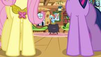 "Rainbow Dash ""um, hello"" S03E13"