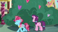 Sugar Belle stops to look at the bushes S8E10