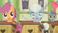 Astounded fillies S2E12.png