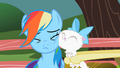 Cat's face on Rainbow's face S2E07.png