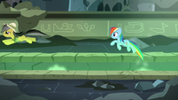 Daring Do and Rainbow bounce across the chasm S7E18