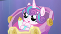Flurry Heart looking adorable S6E16.png