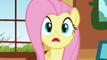Fluttershy's late for a very important date S01E22.png
