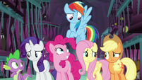 Ponies at varied degrees of hope S8E26