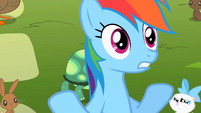 Rainbow Dash 'but cooler' S2E07