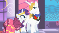 Rarity and Blueblood stare at each other S01E26.png