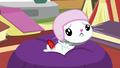 Angel Bunny pouting at Fluttershy S7E5.png