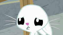 Angel pouting sadly at Fluttershy S9E18