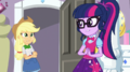 Applejack and Twilight feel sorry for Rarity EGS1.png