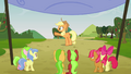 Applejack points at her right S3E08.png