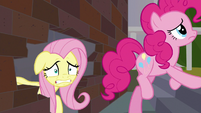 Fluttershy looking very freaked out S9E25