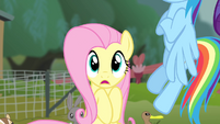Fluttershy reveals she has stage fright S4E14