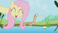 Fluttershy singing to a duck S1E3.png