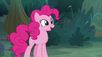 Pinkie Pie -like a friendship quiz- S8E13