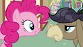 Pinkie Pie Meets Cranky S02E18.png