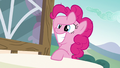 Pinkie Pie grinning widely S6E21.png