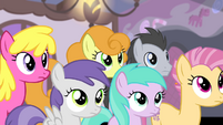 Ponies looking at Fluttershy S4E14