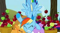 Rainbow Dash crashes into Applejack and Twilight S1E03