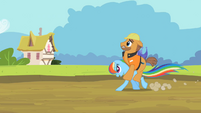 Rainbow Dash running while carrying construction worker S2E08