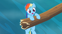 Rainbow Dash speechless S2E8