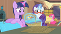 Rarity '...according to that pattern there!' S4E08.png