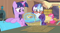 Rarity '...according to that pattern there!' S4E08