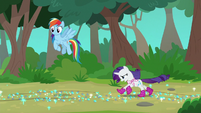 Rarity and Rainbow Dash enter the woods S8E17