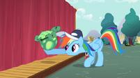 S02E07 Rainbow Dash podnosi Tanka