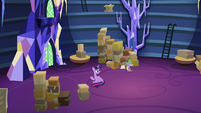 Twilight and Spike in the empty library S9E26