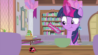 Twilight notices a ladybug on the table MLPS4