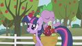 An apple falling S01E03.png