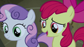 "Apple Bloom ""just came in to get out of the rain"" S5E6.png"