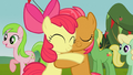 Apple Bloom and Babs reunite S03E08.png