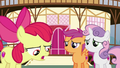 Apple Bloom apologizes to her friends S6E4.png